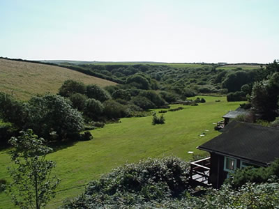 Timber Hill in the Pembrokeshire Countryside